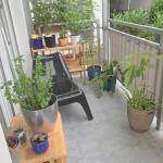 HH-EG Balkon